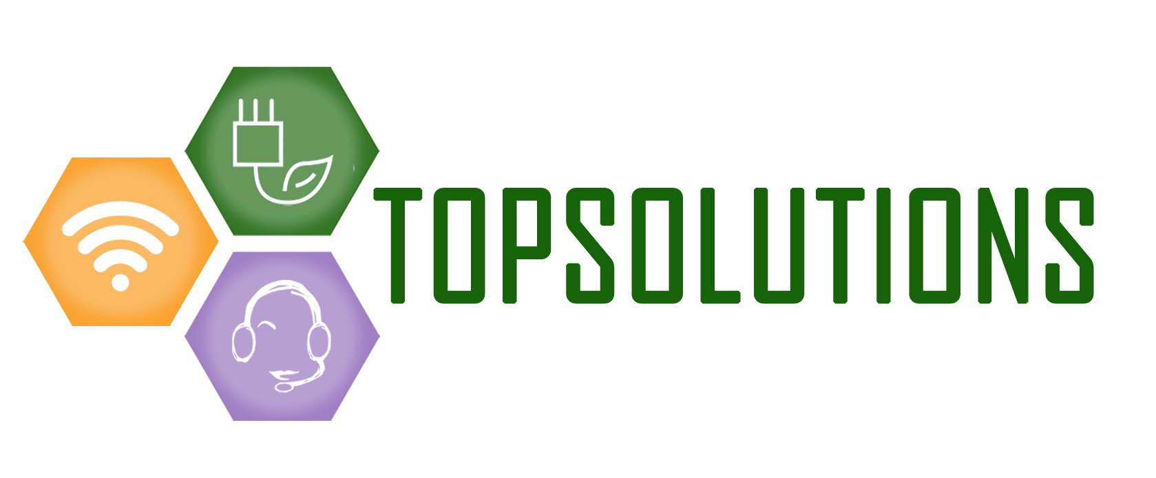 LOGO TopSolutions torino